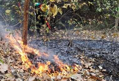 ABT inicia más de 100 procesos administrativos por provocar incendios