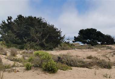 Varias zonas litoraleñas se abren al sector inmobiliario. Foto Internet