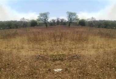 En Macharetí también afecta la sequía. Foto referencial