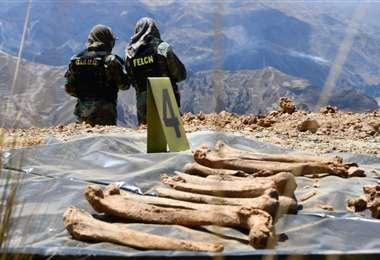 La Policía continúa en la tarea de rescatar los restos óseos