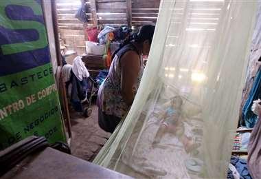 Este año los niños fueron los más afectados por el dengue. Foto: Ricardo Montero
