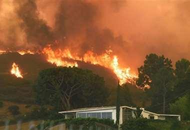 Voraces incendios en California. Foto Internet