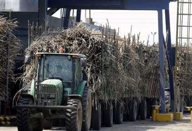 El ingenio Unagro lidera la producción de azúcar /Foto: Ricardo Montero