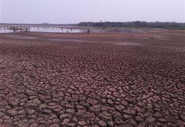Laguna Guapomó muestra los efectos de la sequía. Fot0o. C. Quinquiví