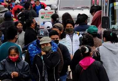 El Comité Científico dice que la población es indisciplinada