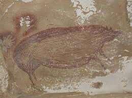 Pintura de cerdo verrugoso de hace 45.500 años