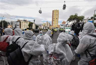 Brigadas de rastrillaje en La Paz I AMN.