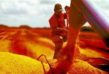 Las exportaciones oleaginosas generan cargas entre 3,5 a 4 millones de toneladas