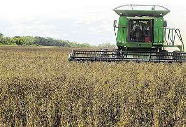 Anuncia que la lucha en defensa de los intereses de los agricultores será férrea