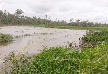 El municipio se declaró en zona de desastre el 29 de enero