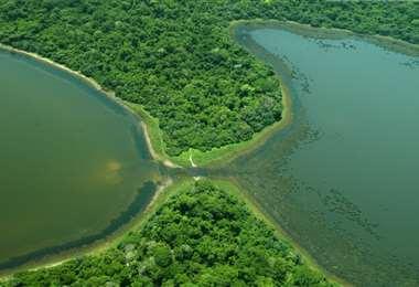 El AMNI San Matías es un área protegida que se creó en 1997
