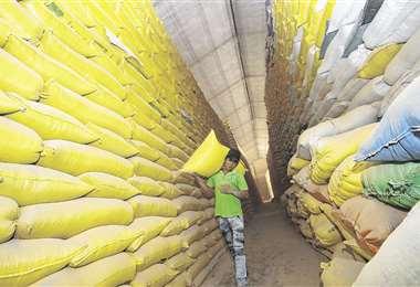 El país subvenciona alimentos pese a tener potencial para producirlos/Foto: EL DEBER