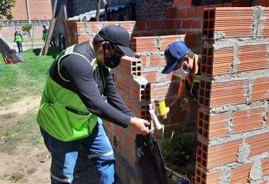 Personal del municipio cruceño realiza destrucción de criaderos de larvas. Foto. Alcaldía