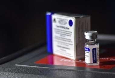 Farmacias evalúan la posibilidad de importar vacunas la país. Foto: Internet