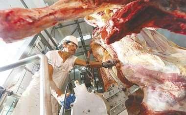 Los ganaderos descartan desabastecimiento de carne bovina