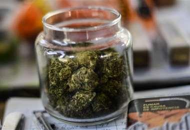 Un frasco con cannabis. Foto AFP