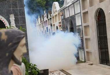 Fumigación en cementerios /Foto: Jorge Ibáñez