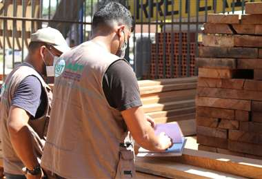 Técnicos de la ABT realizan la verificación de las maderas decomisadas (Fotos: ABT)