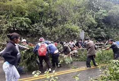 Adepcoca mantenia un bloqueo de 10 días en rechazo al mercado paralelo en La Paz