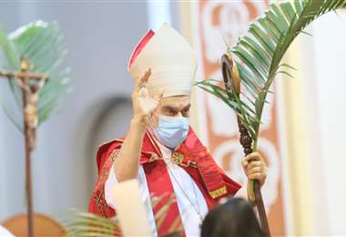 vIglesia Católica celebra la festividad de Ramos. Fotos: J. Ibáñez