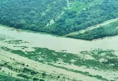 Los desbordes de los ríos afectan zonas productivas de Beni