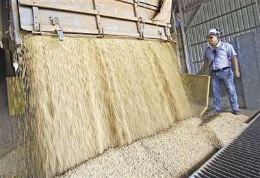 El precio de la soya subió el valor de las exportaciones no tradicionales