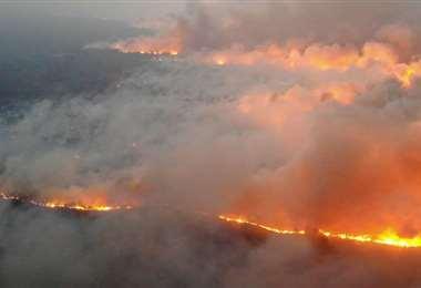 En 2019 el fuego arrasó con millones de hectáreas