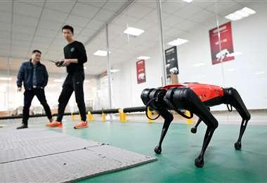 El perro-robot AlphaDog. Foto AFP