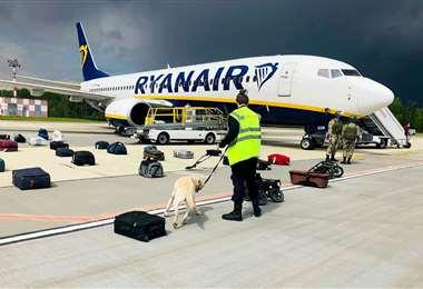 Foto: perros revisan el equipaje de un avión en Minsk (AFP)
