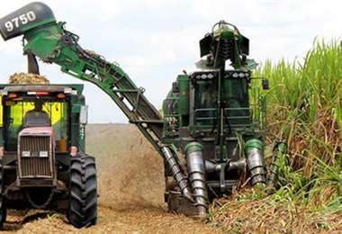 La producción de etanol de los ingenios puede ser usada como una herramienta de soberana