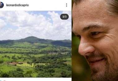 Di Caprio no solo es un actor famoso, también es activista por el medioambiente