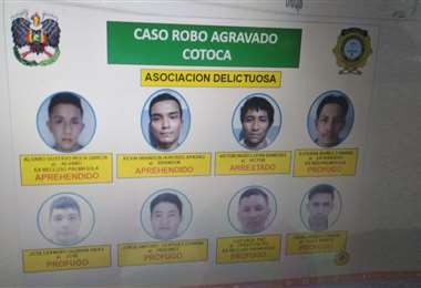La Policía presentó el esquema organizativo de la banda