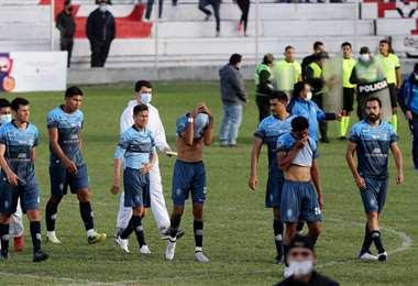 División Profesional