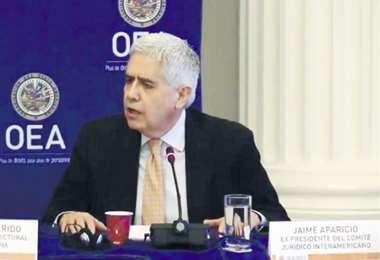 El ex embajador ante la OEA, Jaime Aparicio, ve preocupación en el entorno de Morales.