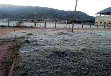 Heladas en los valles afecta a 500 hectáreas de cultivo: Foto: GADSC