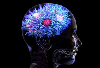 El estudio fue realizado por un equipo de investigadores de la Universidad de Oxford