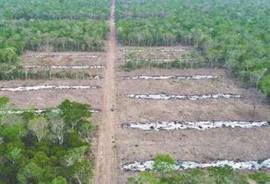 Incrementa la denuncia por el avasallamiento de tierras fiscales y áreas protegidas.