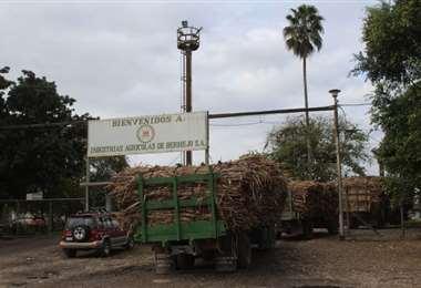 El ingenio de Bermejo comenzará a trabajar con leña y bagazo/Foto: Bermejo Noticias