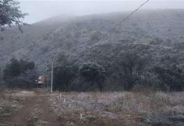 Senamhi reporta nevadas en cuatro provincias de Tarija