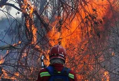 Los incendios forestales afectan a 17 territorios indígenas. Foto: Archivo