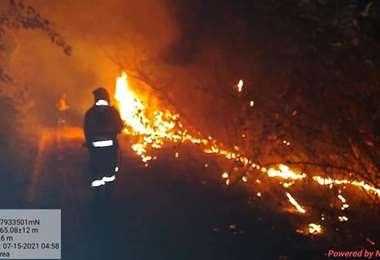 Las llamas en Carmen Rivero Torrez afectaron a más de 1.000 ha. Foto: Alas Chiquitanas