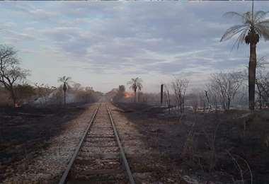 Fotos tomadas de la plataforma Ríos de Pie