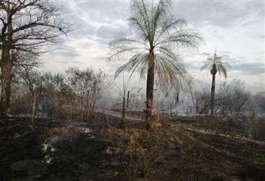 Incendios en Carmen Rivero Tórrez. Fotos: Ríos de Pie