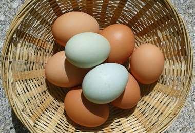 Huevos, foto: internet