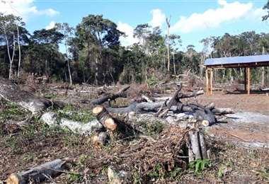 El INRA ya distribuyó tierras a 922 comunidades en Santa Cruz