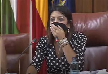 Una rata irrumpe en el parlamento de Andalucía. Foto Internet