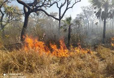 Dos incendios forestales mantienen la alerta en San Matías. Foto: Ríos de Pie