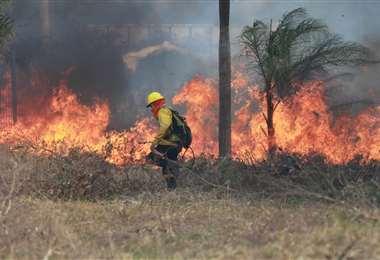 Incendio de pastizales en la zona G-77 | Foto: Jorge Gutiérrez