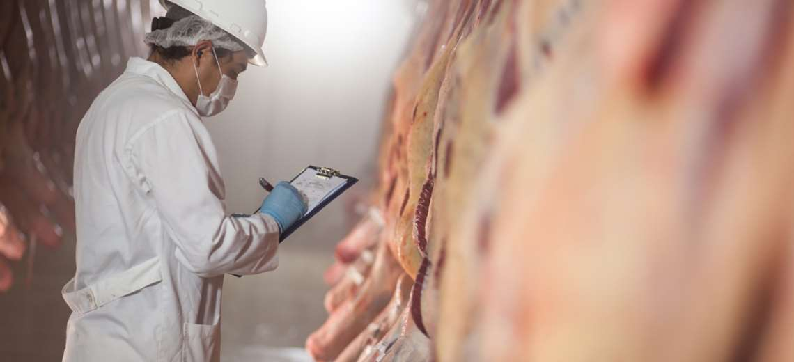 La exportación de carne bovina dinamiza la economía nacional