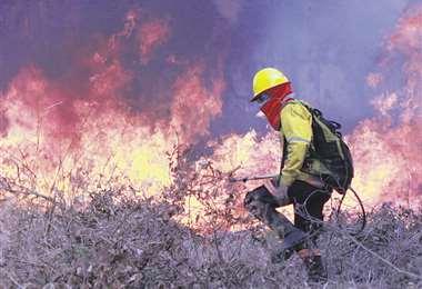 El fuego inició en la G77 y movilizó a más de 120 bomberos. Foto. J. Gutiérrez